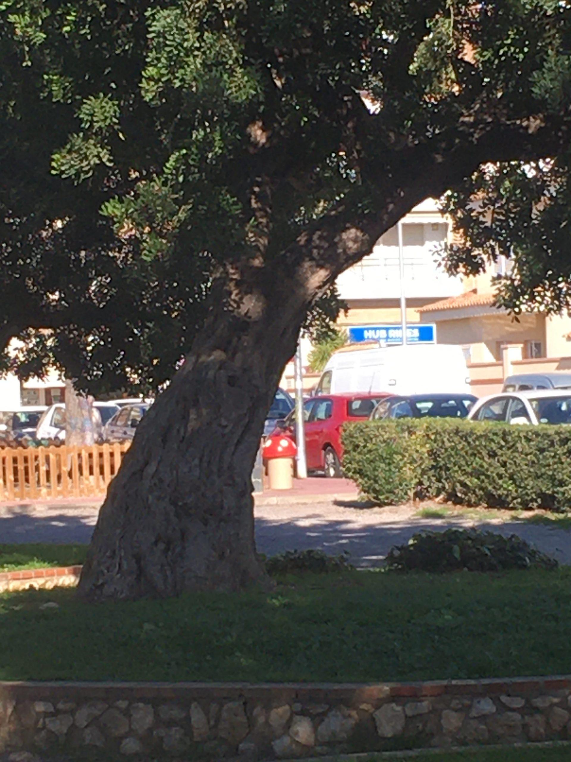 "Coworking Sant Pere de Ribes ""Zona Patos"""